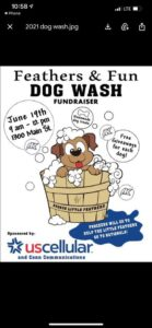Feathers & Fun Dog Wash Fundraiser